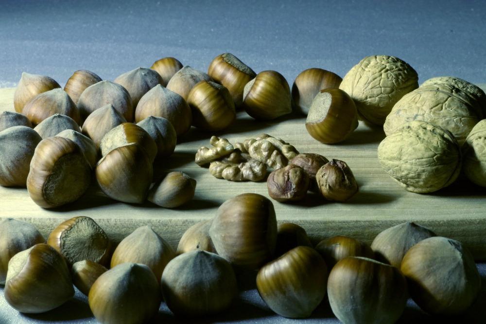 nuts-1261930_1920.jpg
