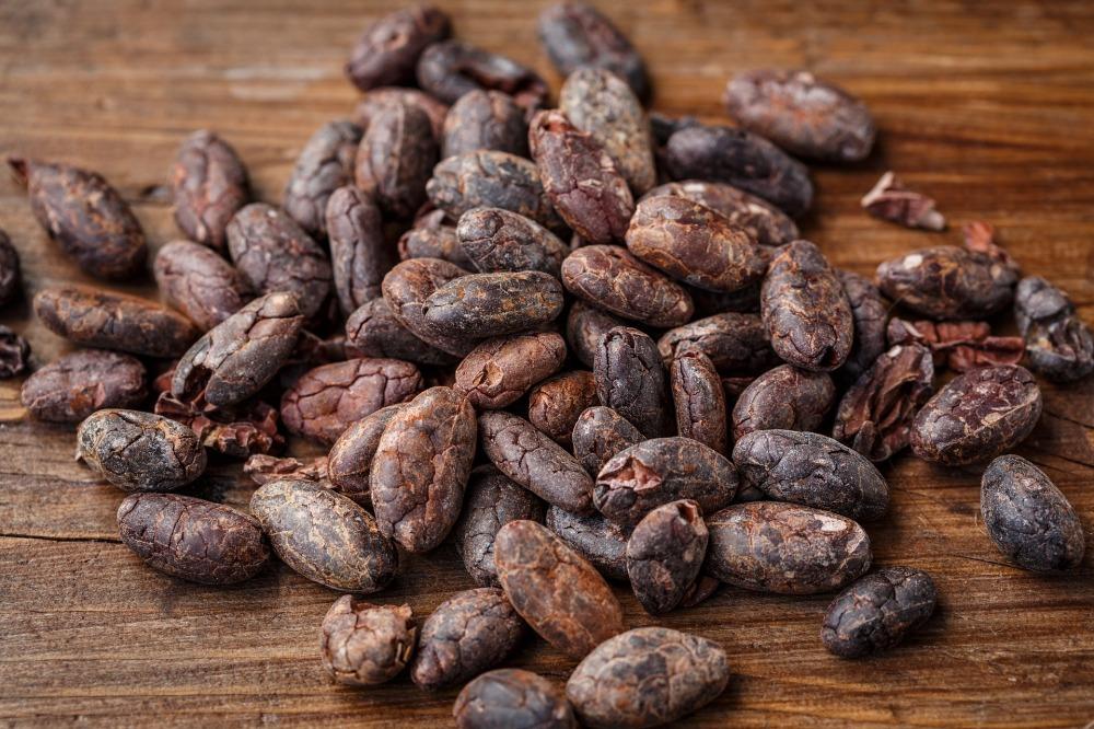 cacao-bean-2522918_1920
