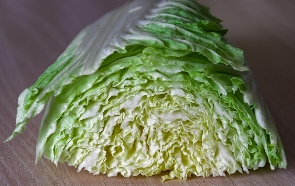 leaf-3350310_1920