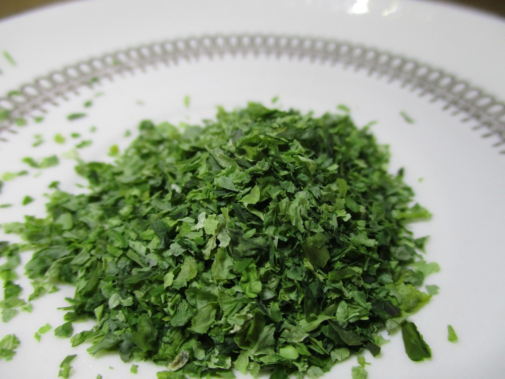 seaweed-2406020_1920.jpg